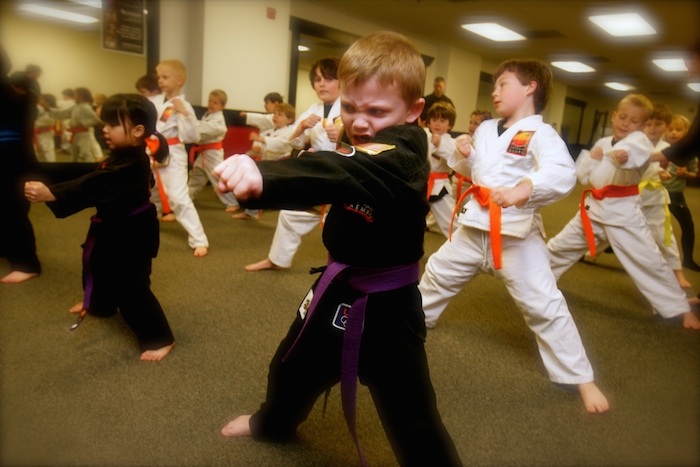 Potomac Kempo - Kids Class